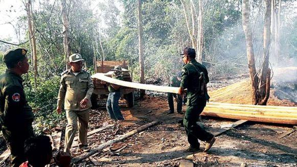 timbers-siezed-in-KThom